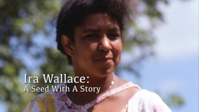Ira Wallace: A Seed With A Story