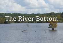 The River Bottom