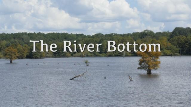 The River Bottom